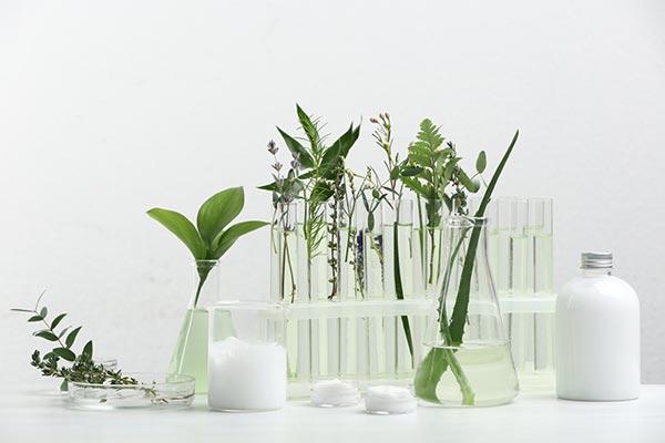 spa room essential oils